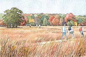 This watercolor rendering features visitors walking through a recreated savanna.