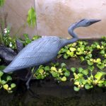 Great Blue Heron Sculpture donated by Mary Lou and Peter D. Bennett